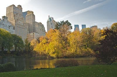 Central Park during Autumn, NYC.jpg