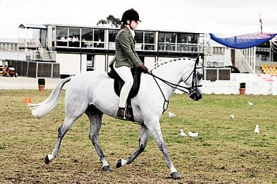 Horse riding in coca cola arena - melbourne show 2005.jpg